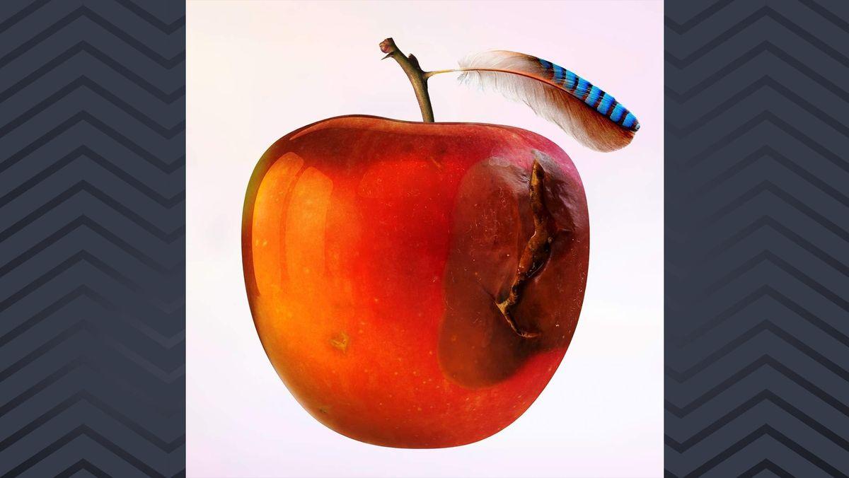 """Das Cover von """"Ententraum"""" von International Music zeigt einen angefaulten Apfel, aus dem oben neben dem Stiel eine Feder  herausragt."""