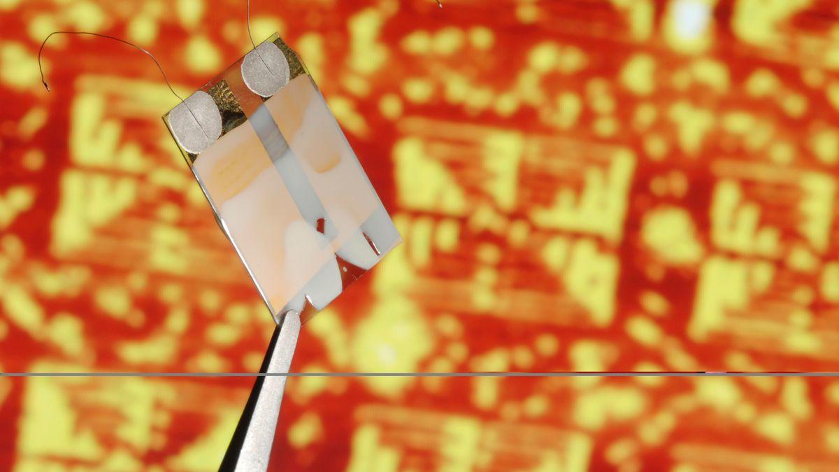 Ein Mikrochip wird von einer Pinzette gehalten (Symbolbild)