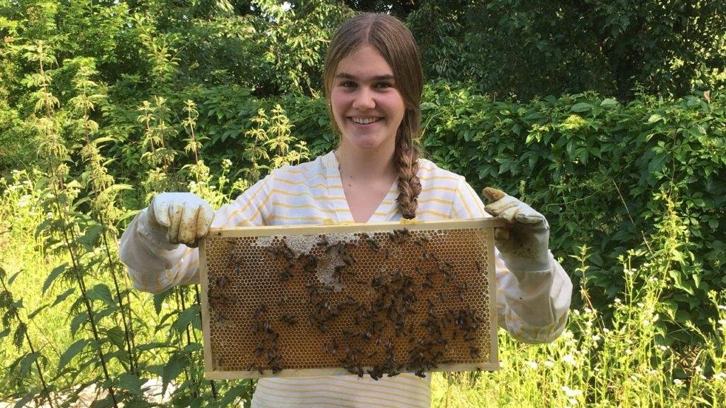 Die 14-jährige Sophia S. hält eine Bienenwabe mit einigen ihrer 180.000 Bienen hoch