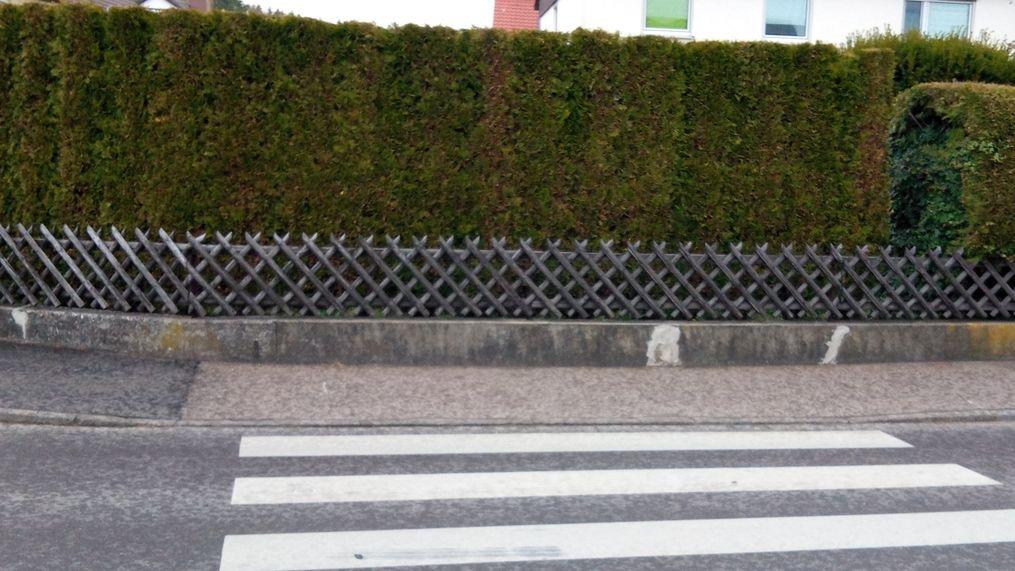 Sichtschutz - hier eine Hecke