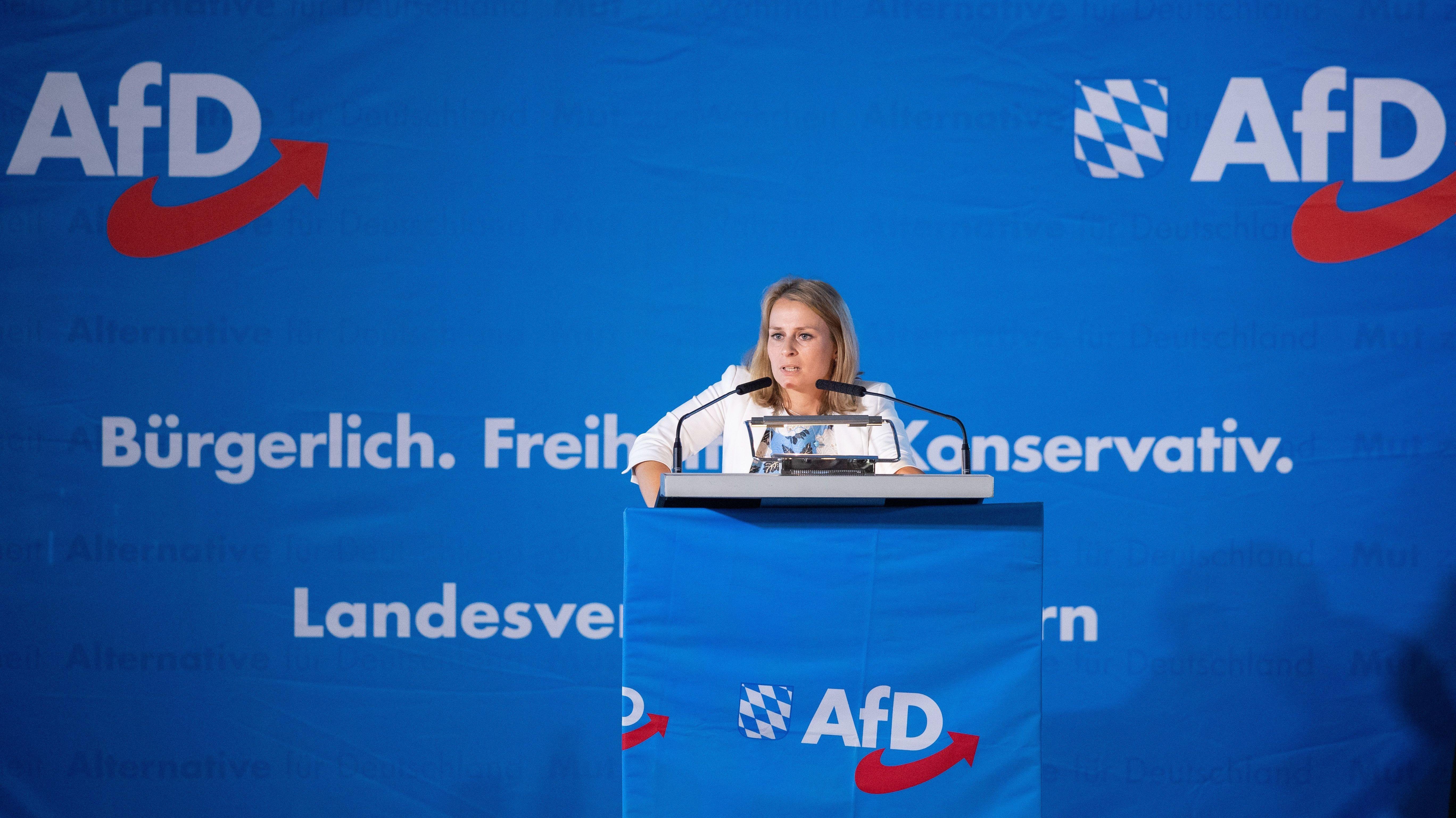 AfD-Parteitag: Selbstbeschäftigung statt politische Konzepte