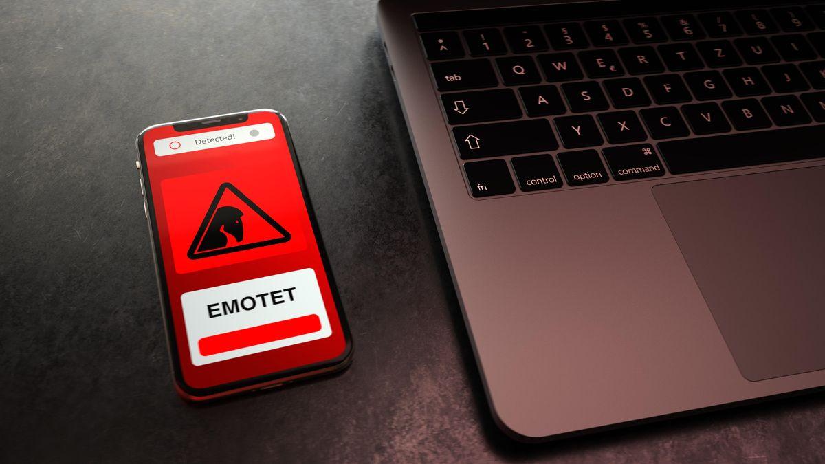 """Die Computerschadsoftware Emotet galt als """"König der Schadsoftware"""". Bis deutsche Ermittler das Botnetz zerschlagen haben."""