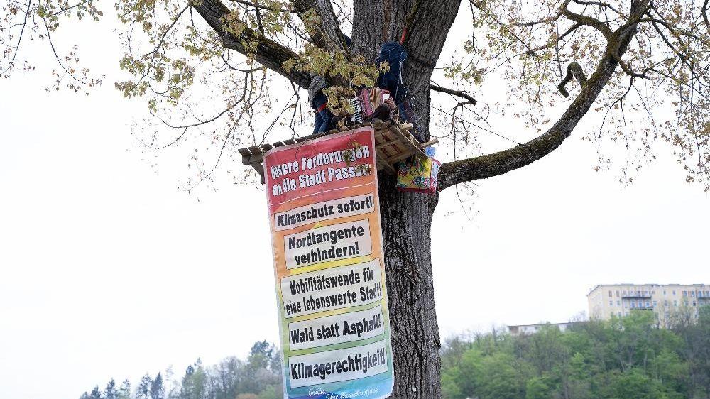Klimaschützer in Passau besetzen einen Baum, um auf ihre Forderungen aufmerksam zu machen
