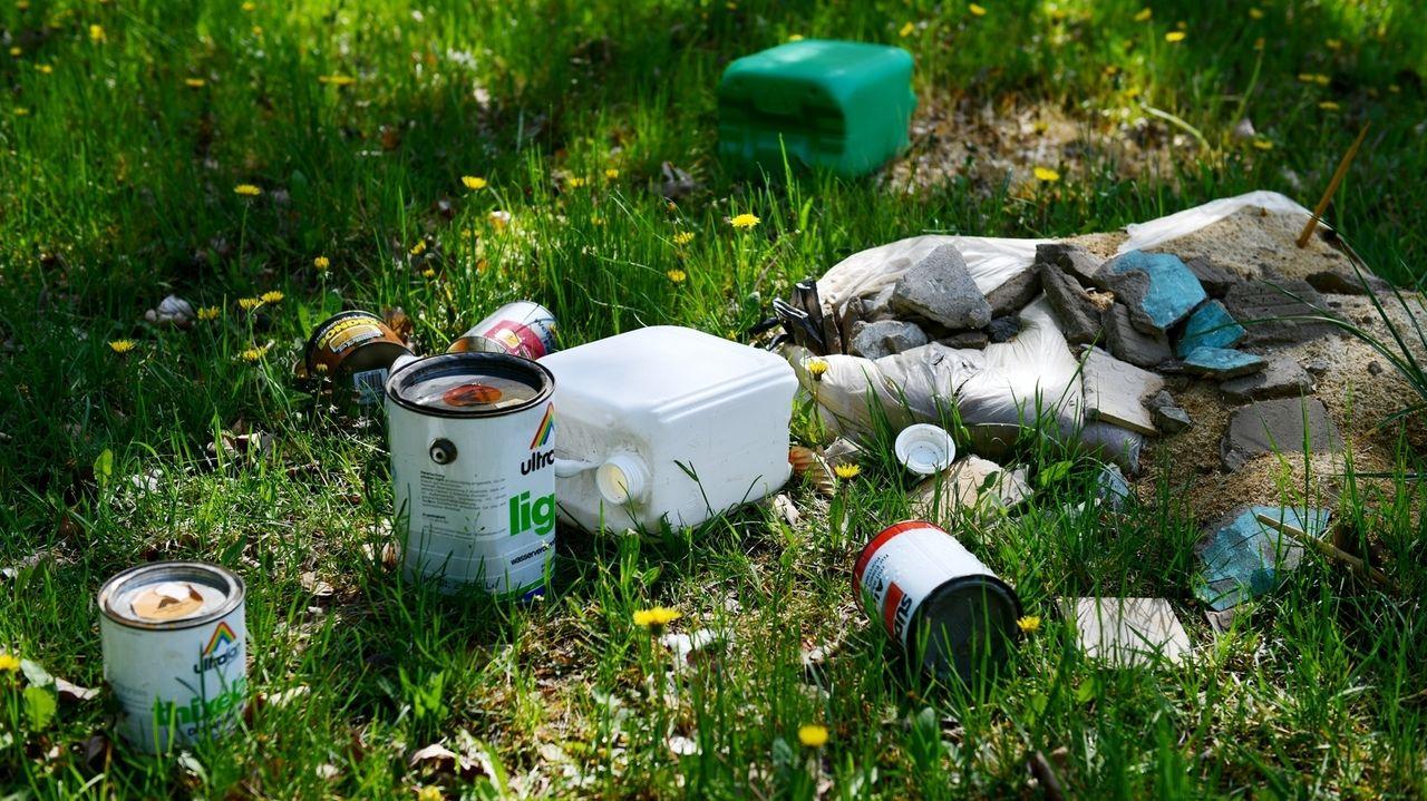 Müll auf einer Waldwiese (Symbolbild)