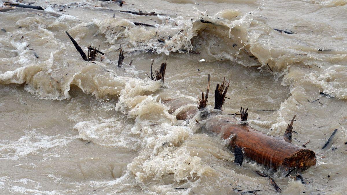 Symbolbild: Baumstamm in einem Fluss bei Hochwasser