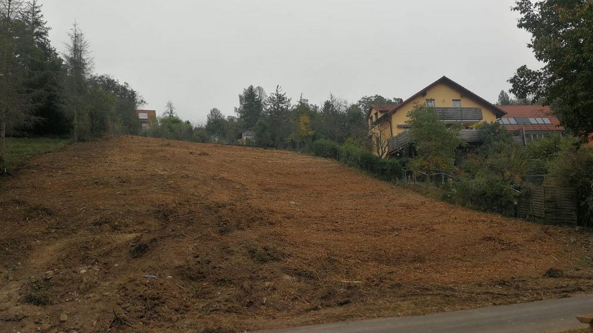Gerodetes Hanggrundstück in Gerbrunn