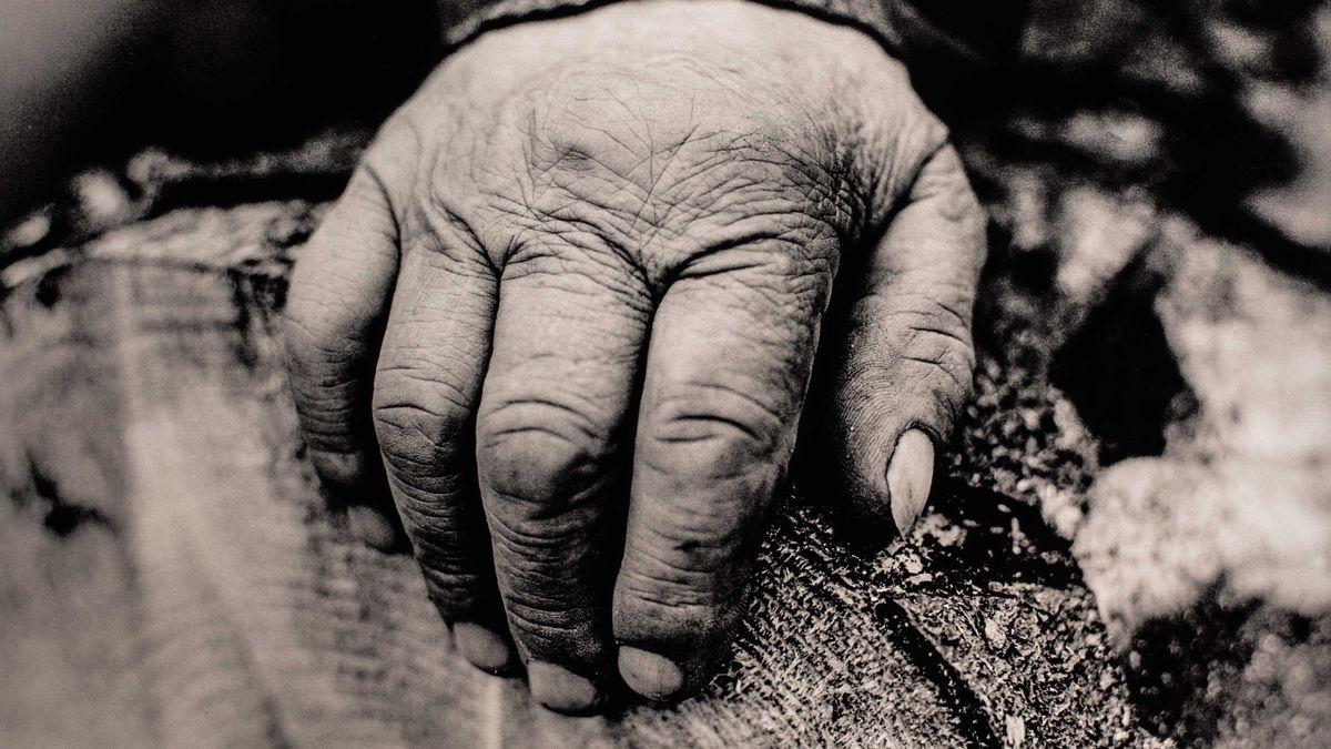 Schwarzweißaufnahme einer von der harten Arbeit gezeichnete Hand eines Waldarbeiters