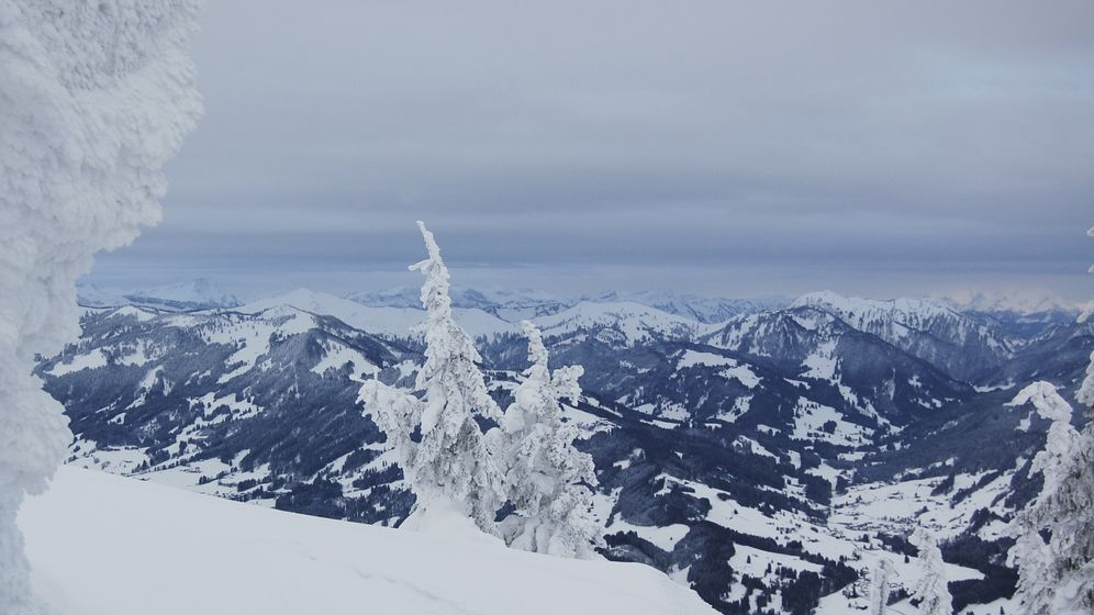 Blick vom Grünten auf die Allgäuer Alpen | Bild:BR Bild