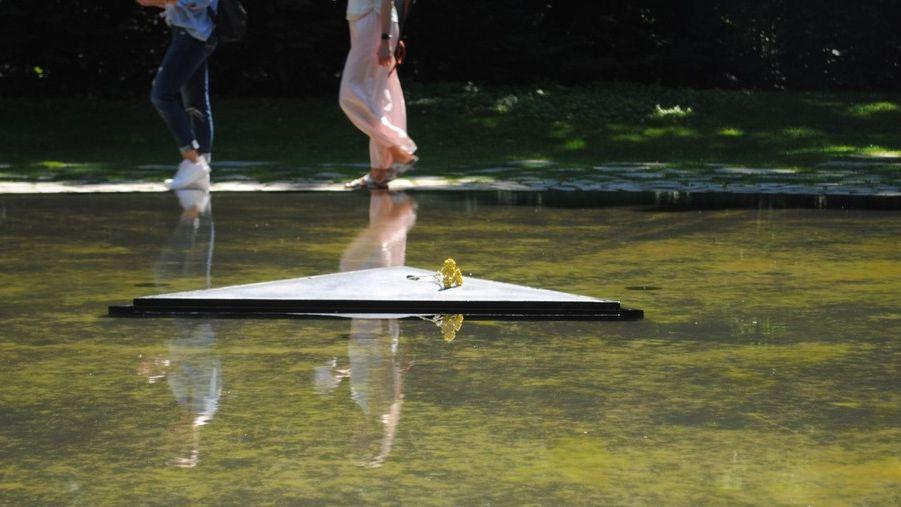 Ein dreiecker Schieferstein mit gelben Stein?-Blüten liegt in einem flachen Wasserbecken: Denkmal für die Opfer der Sinti und Roma im Nationalsozialismus