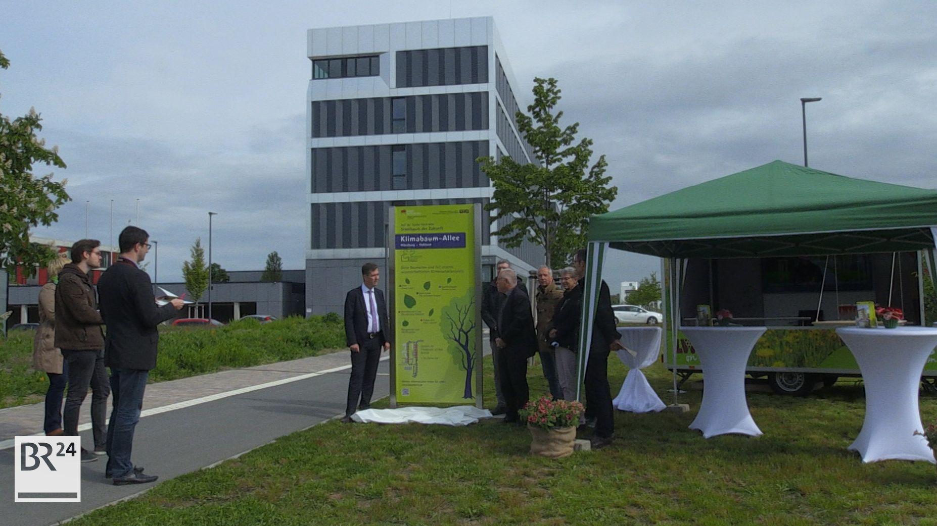 Stele zur 2. Würzburger Klimabaum-Allee eingeweiht