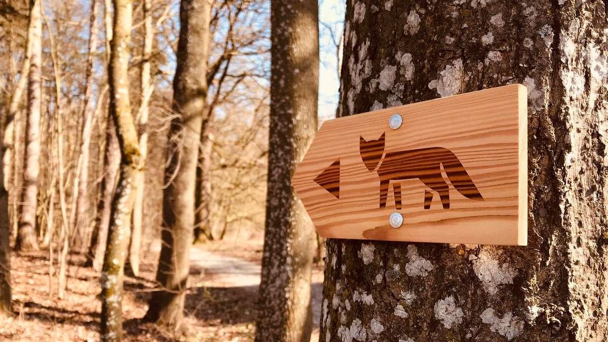 Eggenfelden: Eröffnung des ersten digitalen Waldlehrpfads weltweit am 22.03.2019.