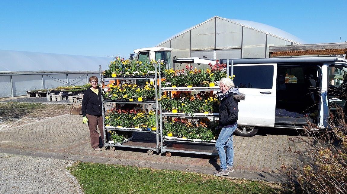 Vorbereitungen für den Transport der Blumen in Gadheim
