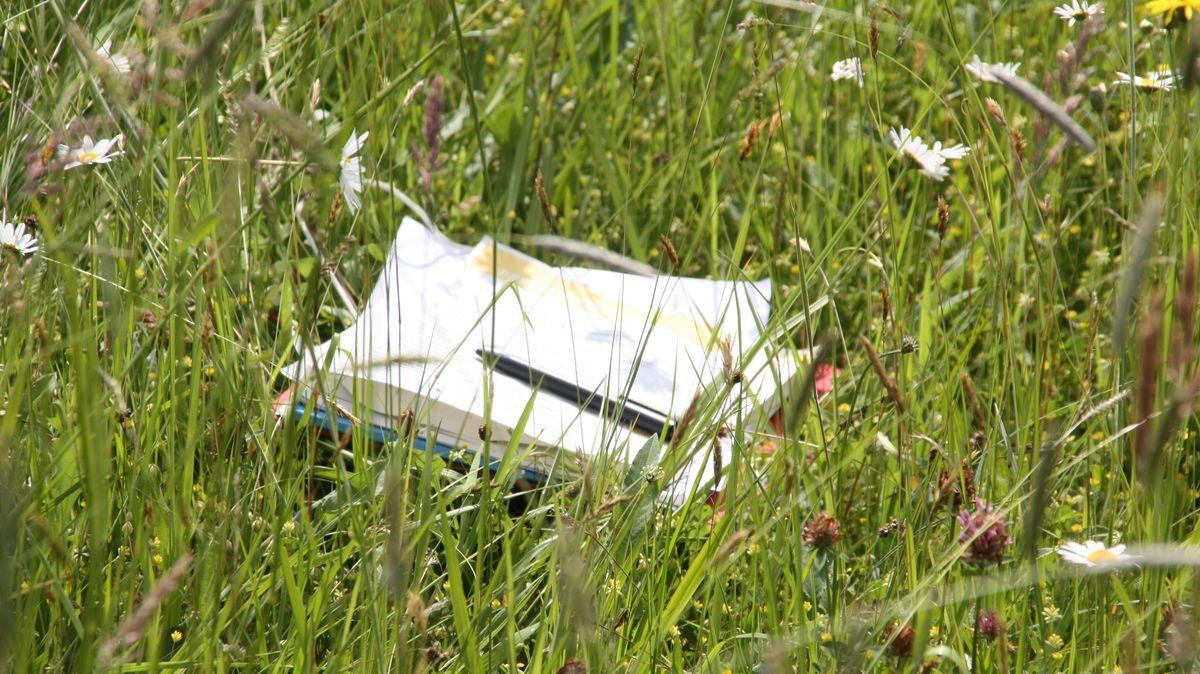 In einer Wiese, auf der zwischen den Gräsern Margeriten und andere Blumen blühen, liegen Unterlagen aus Papier und darauf ein Stift.