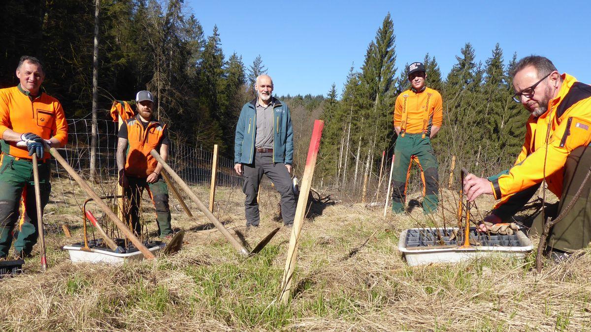 Forstwirtschaftsmeister Paul Hilgart, Azubi Michael Wirth, Revierleiter Ulrich Matschke, Azubi Max Ammon, Forstbetriebsleiter Jürgen Völkl