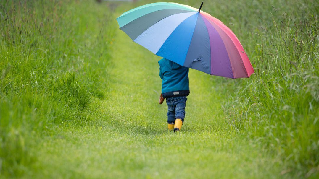 Über Regen freut sich nicht nur die Natur, auch Verbraucher können damit Geld sparen.