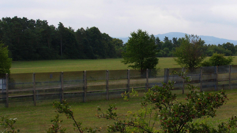 DDR-Grenzzaun (Symbolbild)