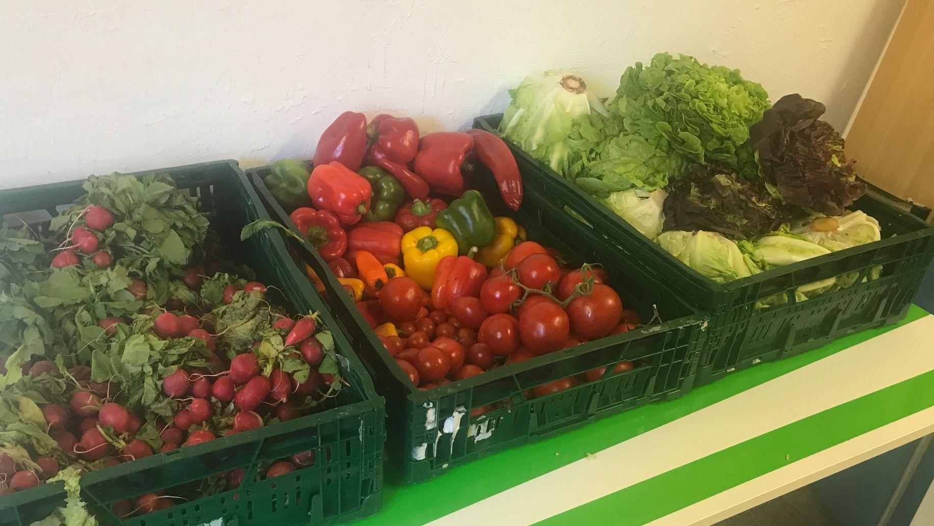 Gemüse im Foodsaver-Laden in Kempten