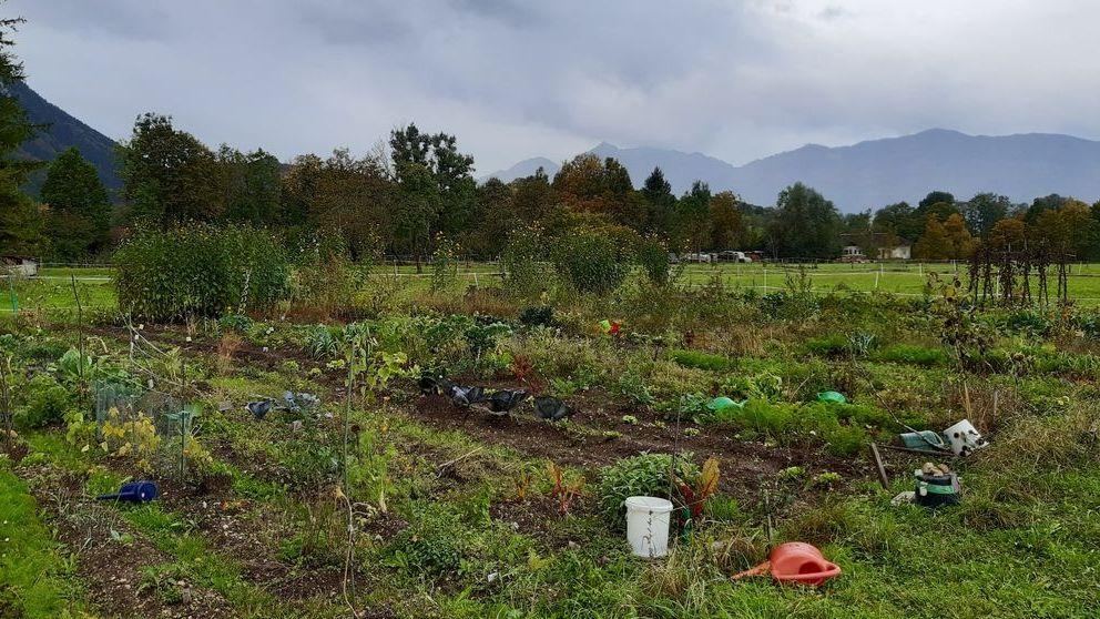 Der Klimawandel macht auch vor dem Landkreis Garmisch-Partenkirchen nicht halt