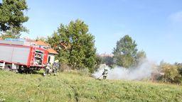 Die Lehrberger Feuerwehr beim Löschen der brennenden Gartenabfälle.  | Bild:NEWS5