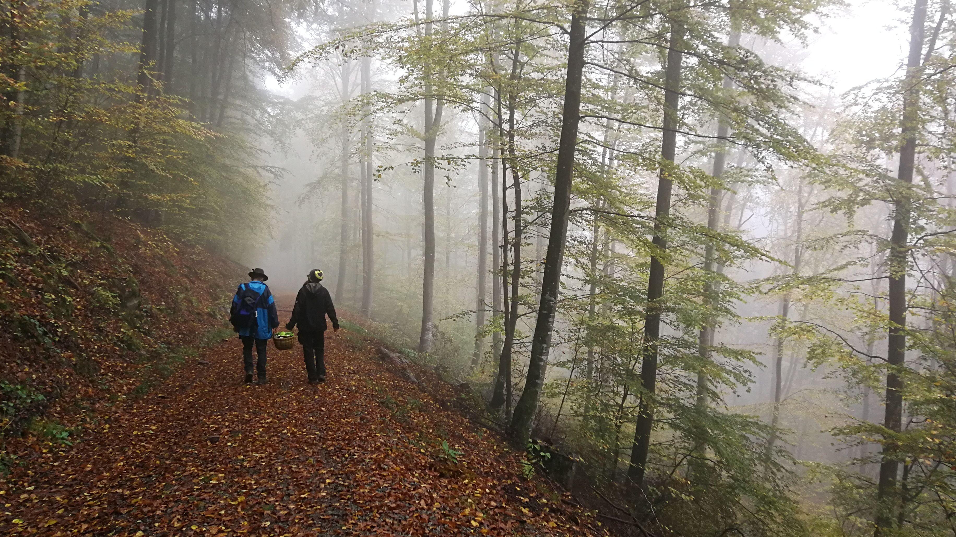 Tanja Ruppert und Vater Wolfgang in einem Waldstück im Spessart.