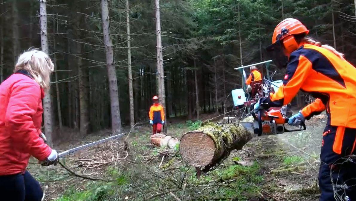 Frauenpower im Kampf gegen den Borkenkäfer. Zwei Schwestern in Oberehesberg meistern die Aufarbeitung von Käfern in ihrem Wald.