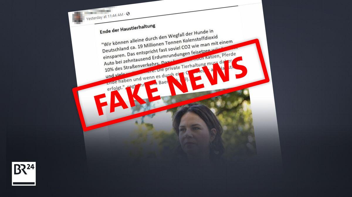 Fake News: Es gibt keine Hinweise, dass Annalena Baerbock diese Aussage getroffen hat.