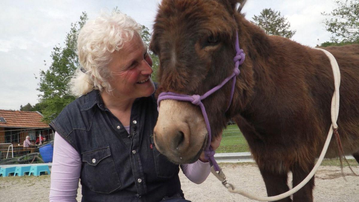 Anahid Klotz mit einem ihrer Esel.