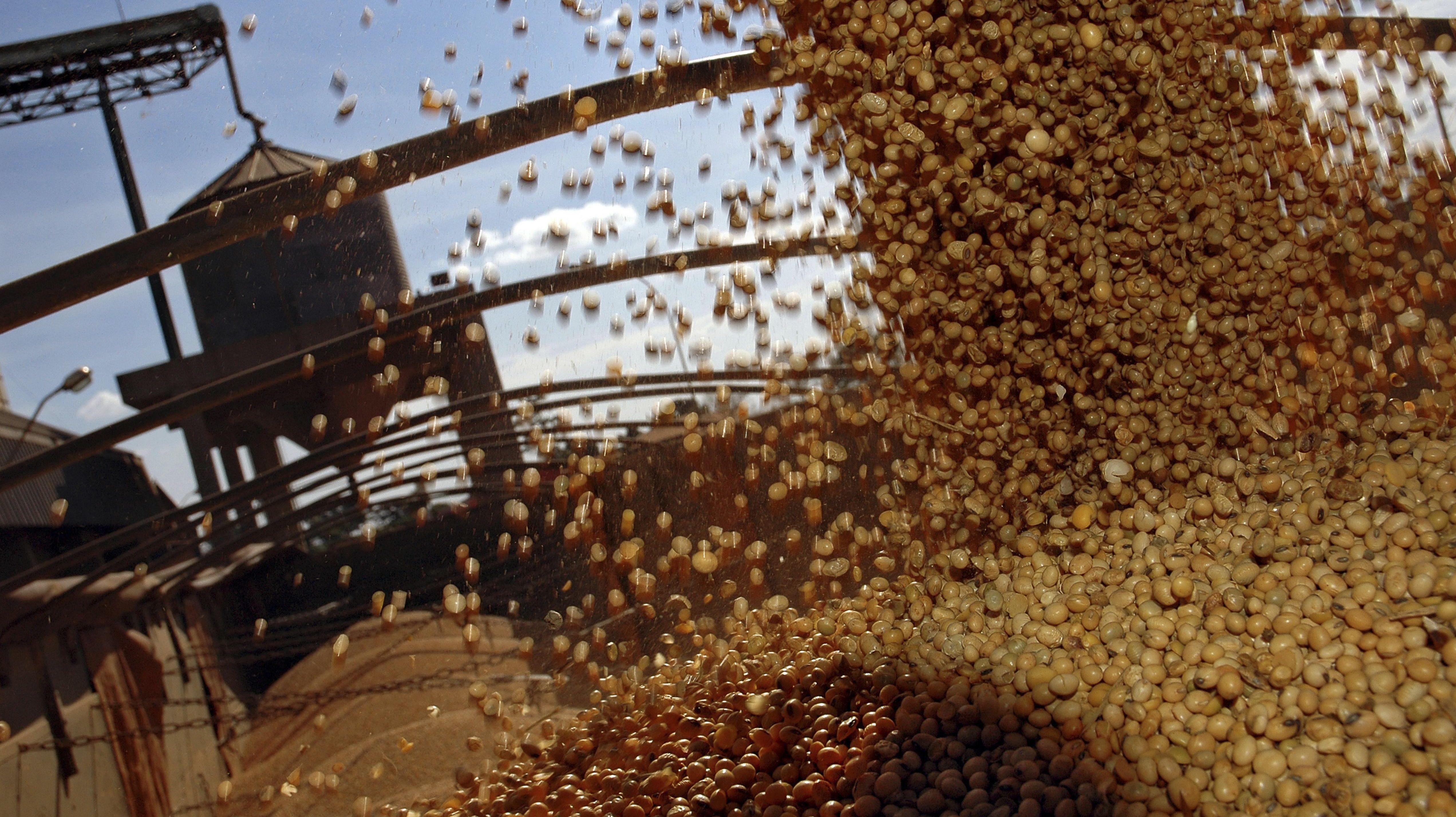 """Beladen eines LWK mit Soja-Bohnen durch die staatliche """"Companhia de Armazens e Silos do Estado de Minas Gerais"""" (CASEMG) in Uberaba, Brasilien."""