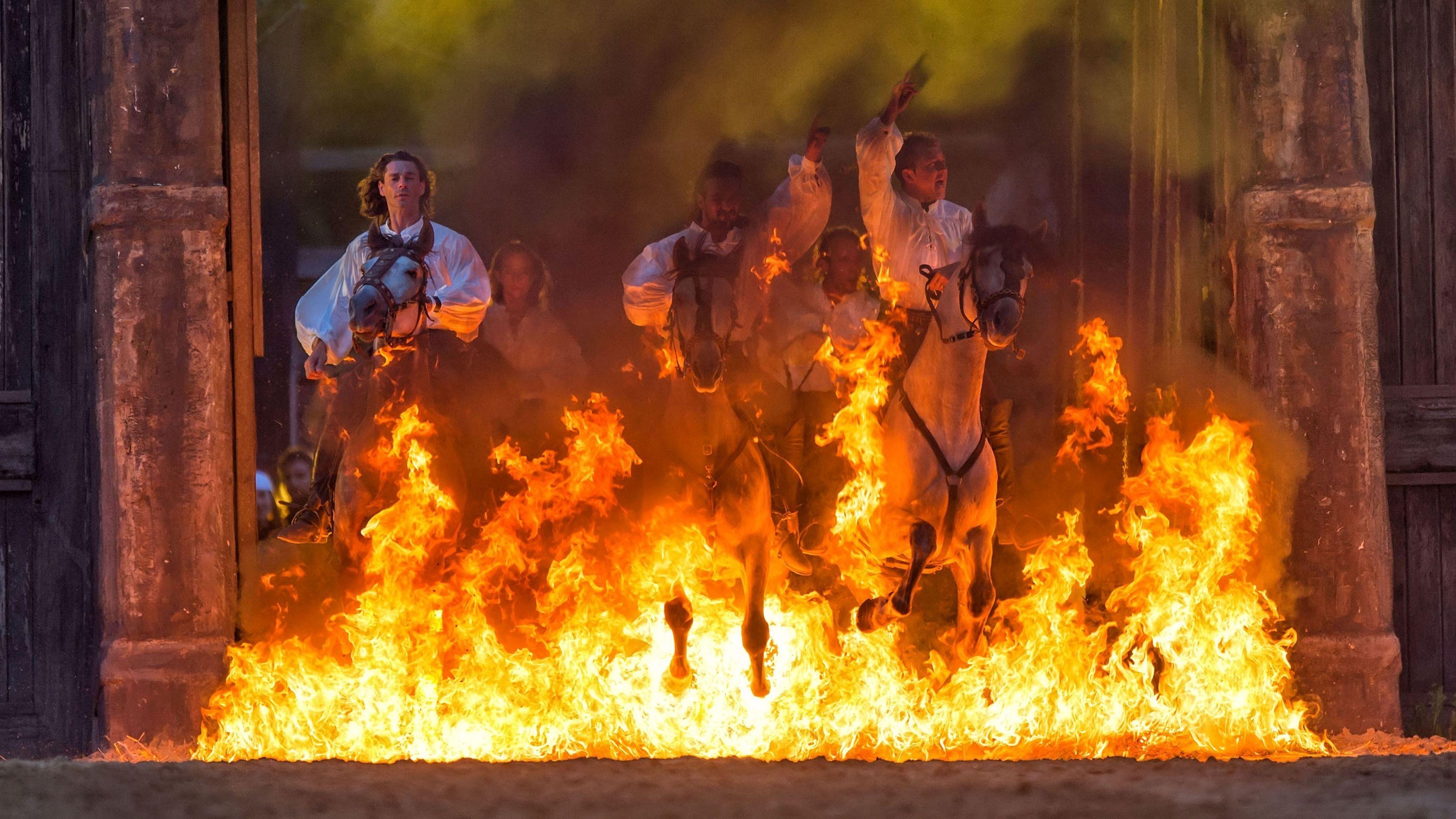 Mutige Reiter galoppieren durchs Feuer.