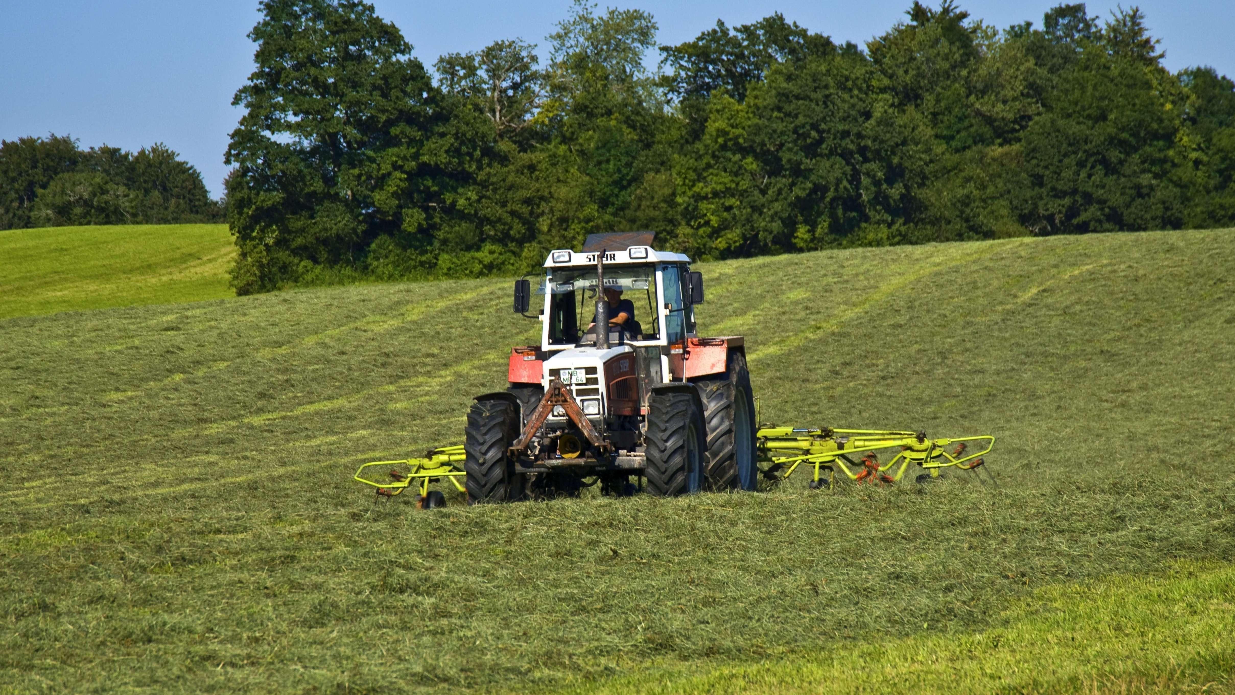 Traktor beim Heumachen auf der Wiese