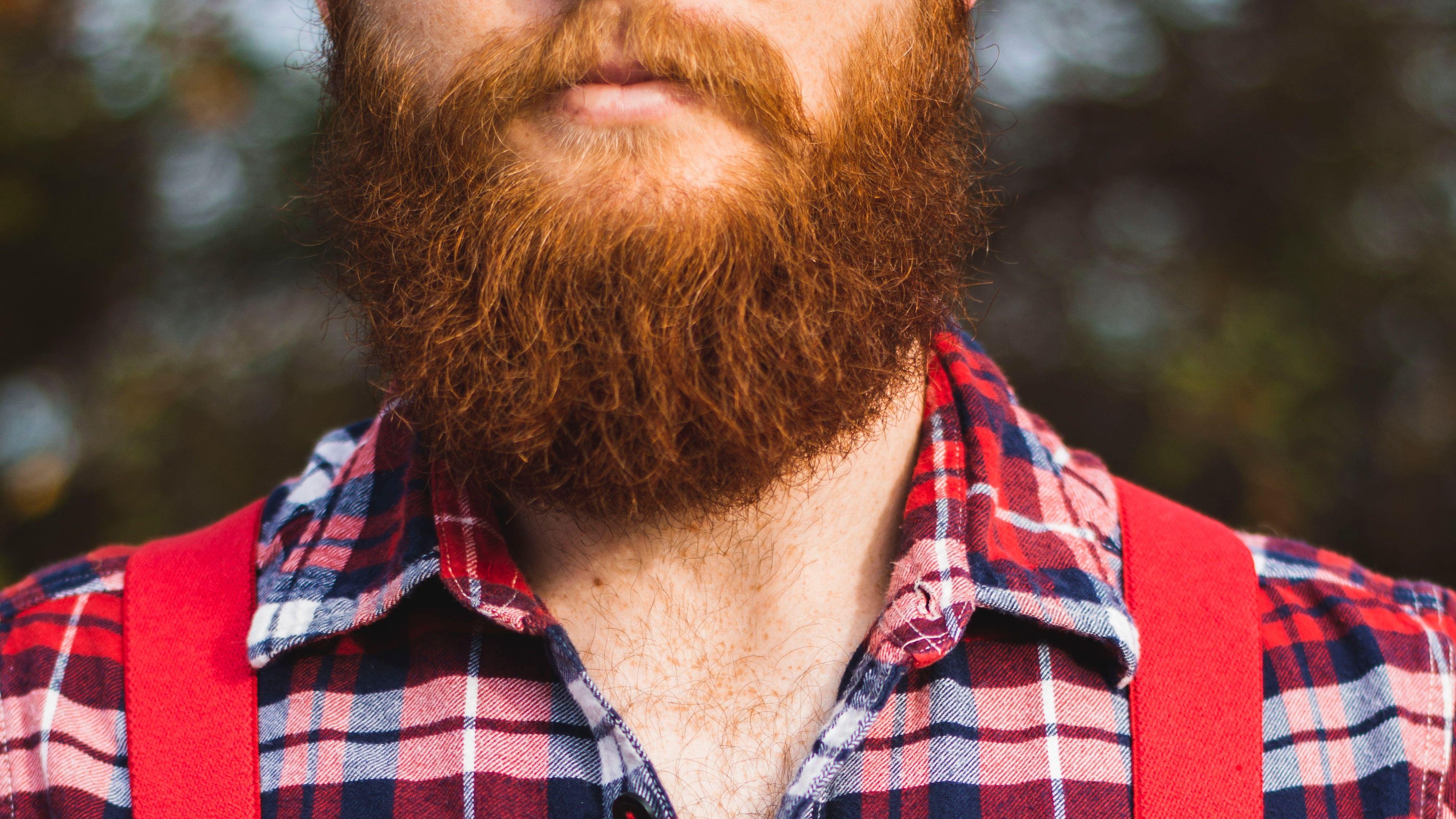Mann mit Bart, Holzfällerhemd und roten Hosenträgern (Ausschnitt)