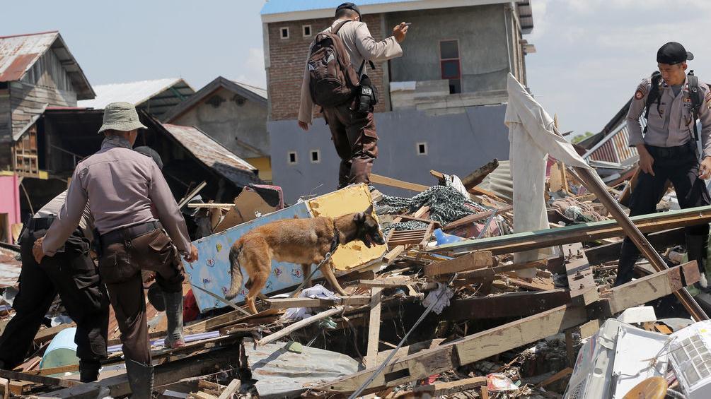 """Bild aus dem Katastrophengebiet. Zerstörte Häuser, Helfer, Suchhund. Auch ein Team der Freisinger Hilfsorganisation """"Navis e.V."""" ist jetzt in Indonesien gelandet."""