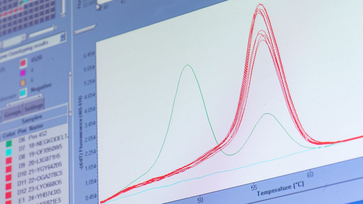 """Eine rote """"Schmelzkurve"""" zeigt auf einem Monitor im Labor von Bioscientia die """"Delta-Variante"""" des Virus. Bioscientia gehört zu den größten Corona-Test-Laboren Deutschlands. Die als besonders ansteckend geltende Delta-Mutation hat mittlerweile einen dominanten Anteil unter den Corona-Neuinfektionen in Deutschland erreicht."""