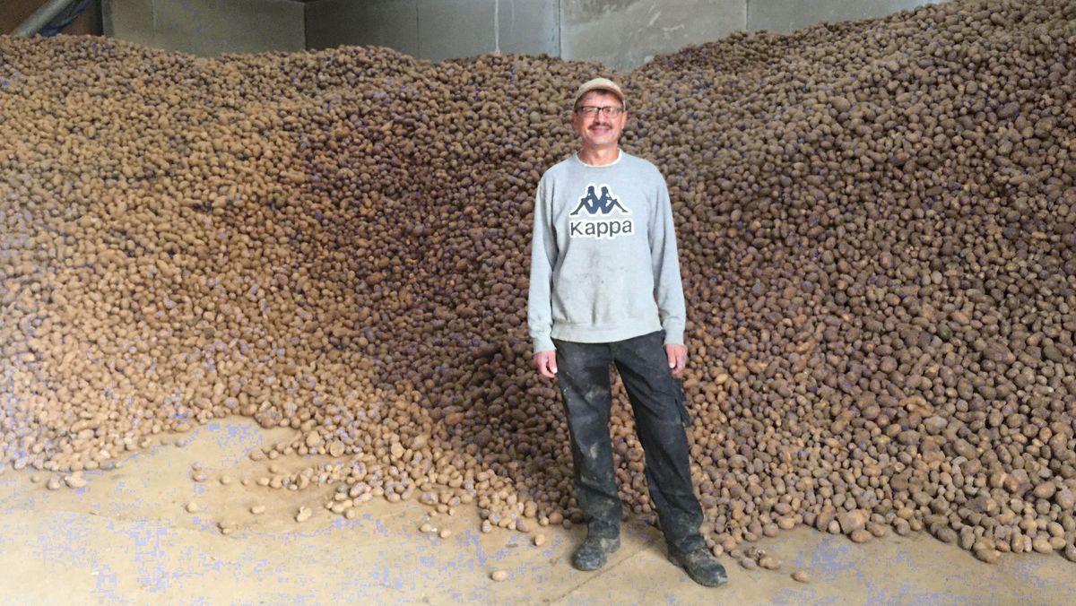 Landwirt Rupert Hetterich aus Fährbrück im Landkreis Würzburg vor 400 Tonnen Kartoffeln.