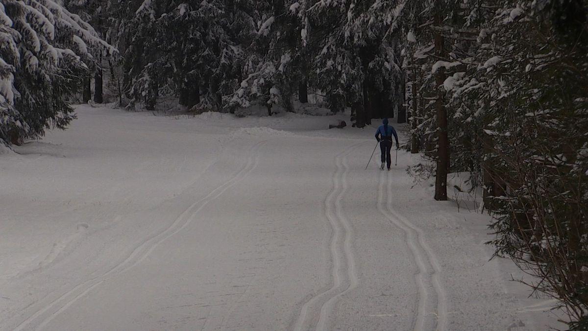 Ein Mann geht in St. Englmar langlaufen