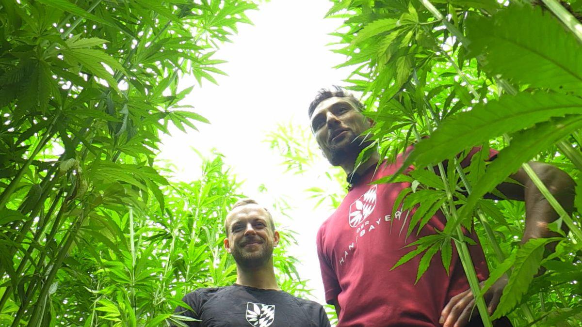 Daniel Baumann und Markus Kneißl vor ihrer Hanfplantage
