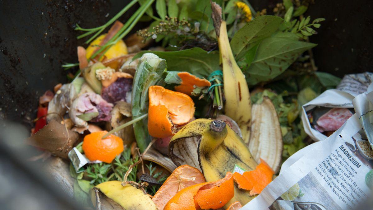 Lebensmittelreste in einer Mülltonne.
