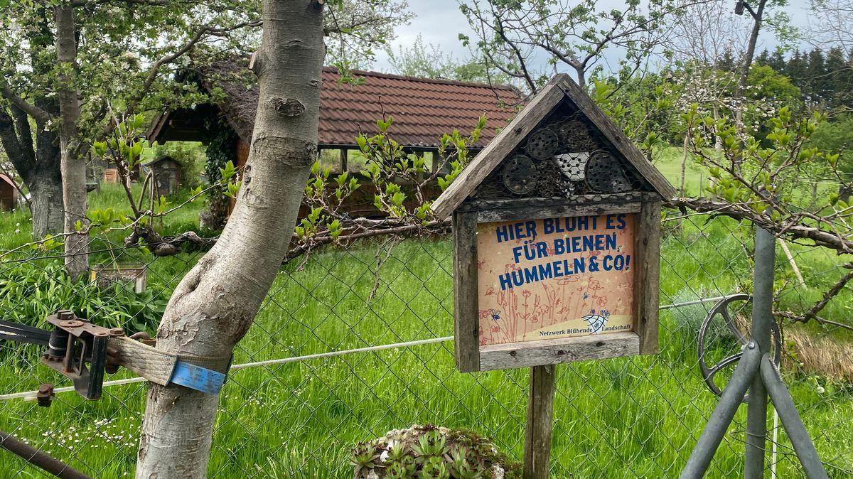 Insektenhotel mit Aufschrift im Garten von Familie Sollinger.