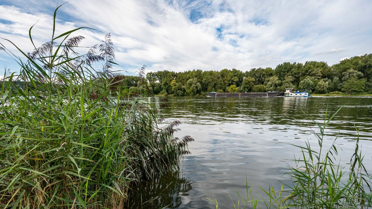 Die Donau bei Vilshofen