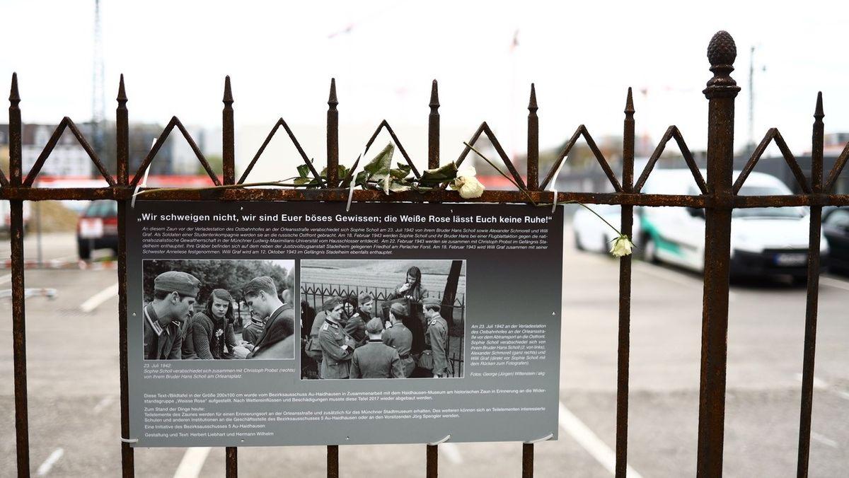 Gedenktafel mit weißen Rosen am historischen Zaun.