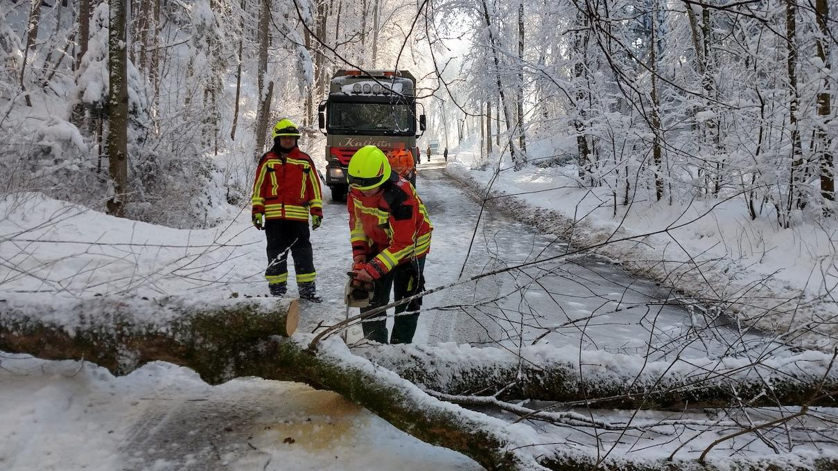 Die Landshuter Feuerwehr schneidet einen umgestürzten Baum auseinander, um die Straße wieder befahrbar zu machen.