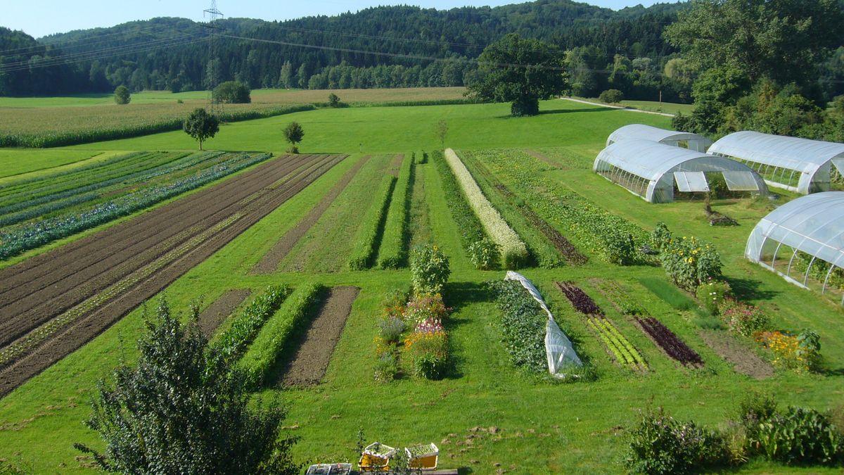 Bio-Landbau des Biogärtners Harro Colshorn