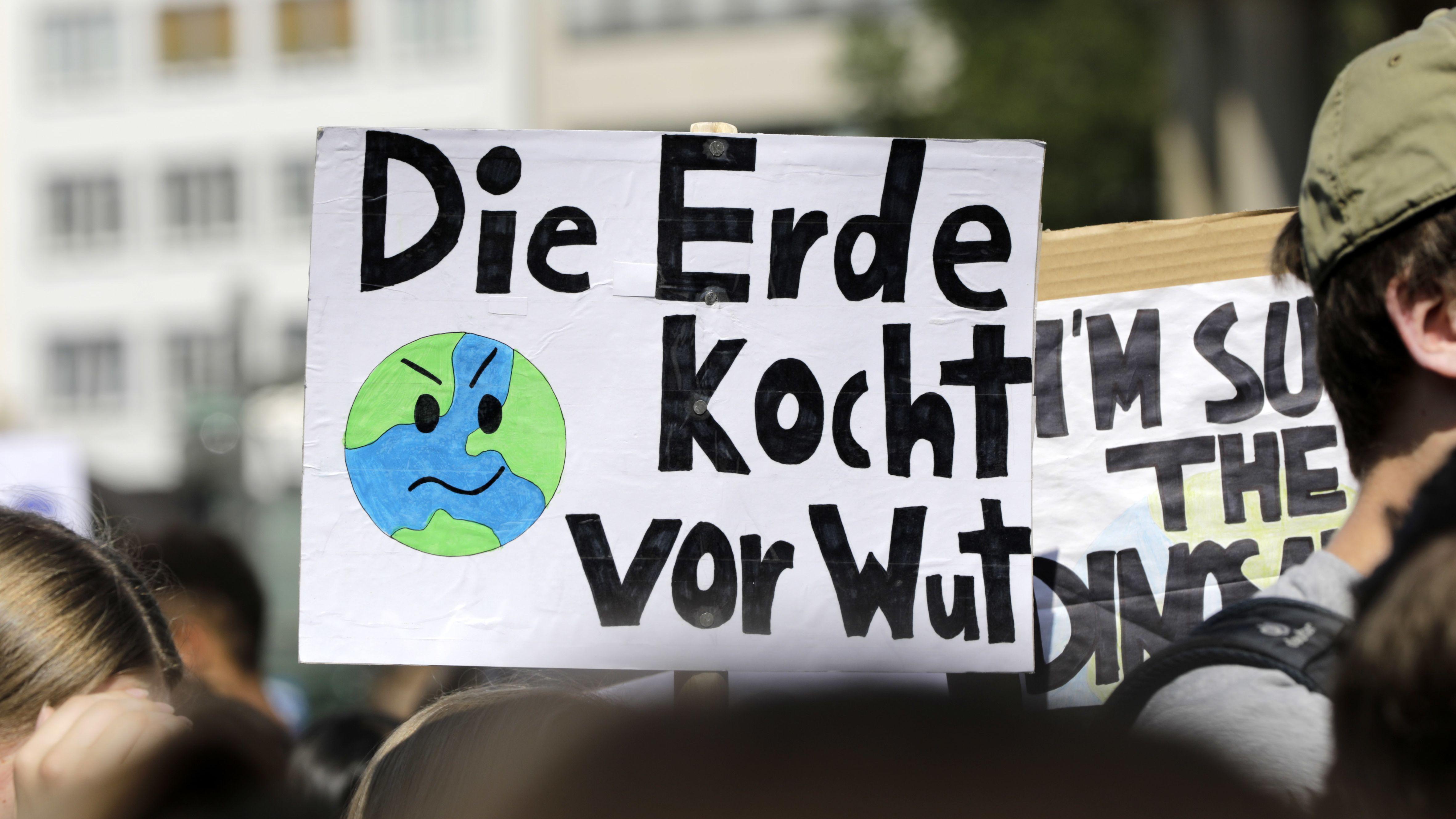 """Fridays for Future""-Schülerdemonstration in Hannover"