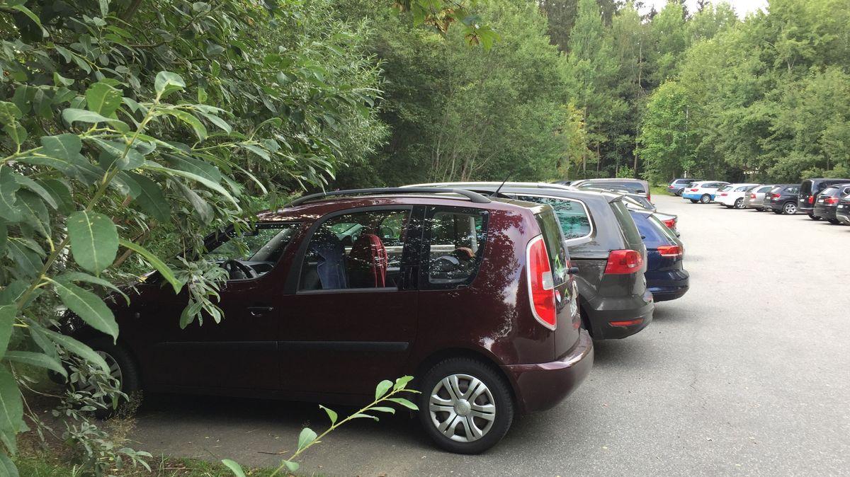 Volle Parkplätze im Nationalpark