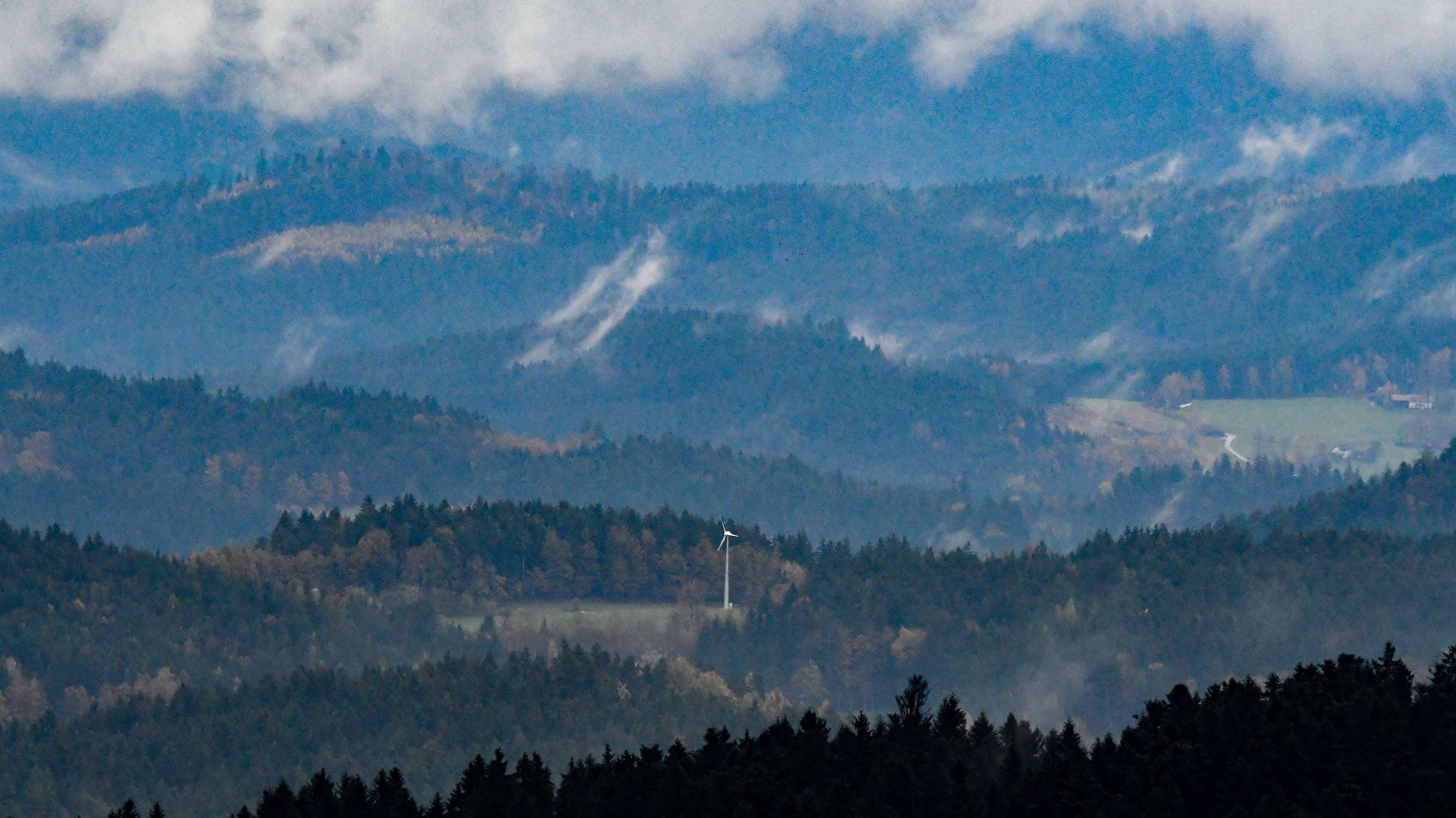 Bayerischer Wald bei Viechtach