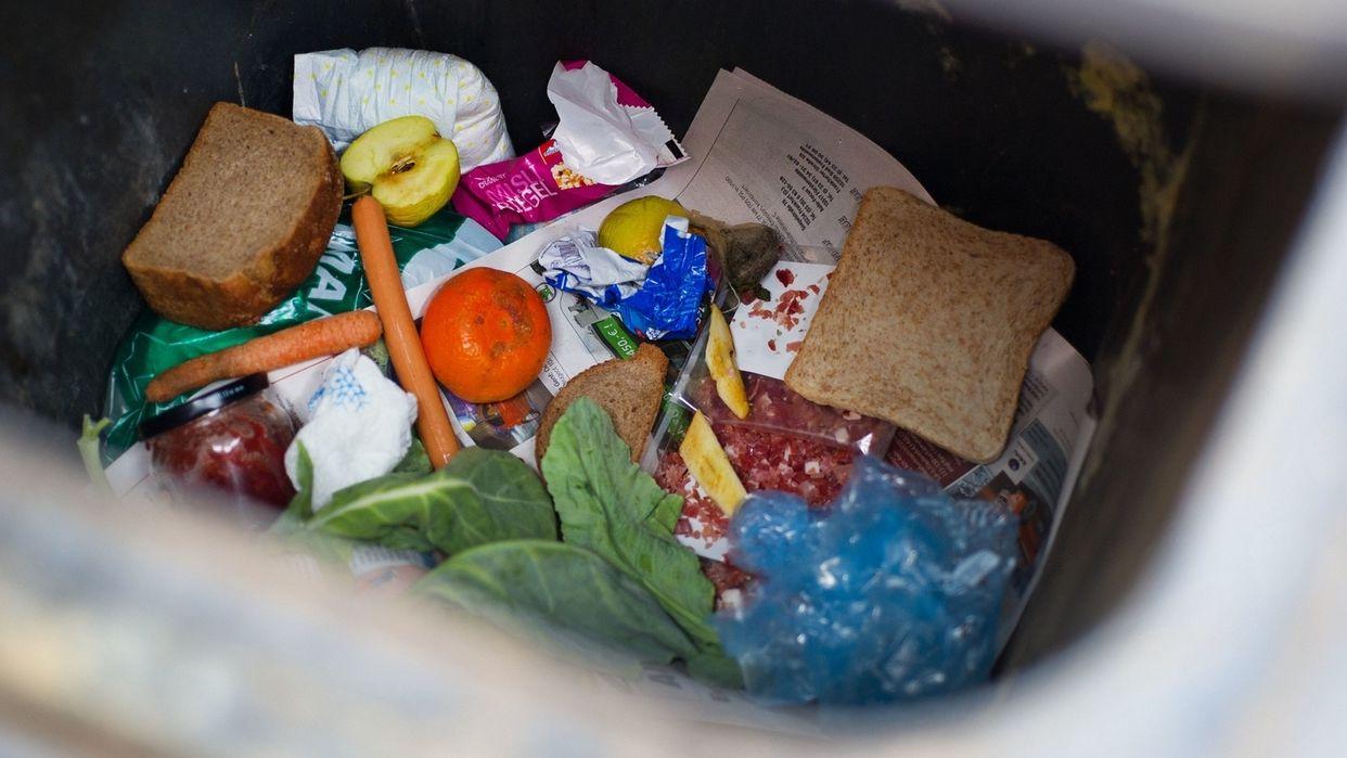 Lebensmittelverschwendung: Landtag debattiert