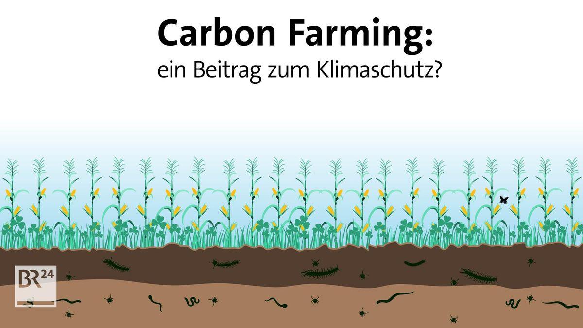 #fragBR24💡 Carbon Farming: ein Beitrag zum Klimaschutz?