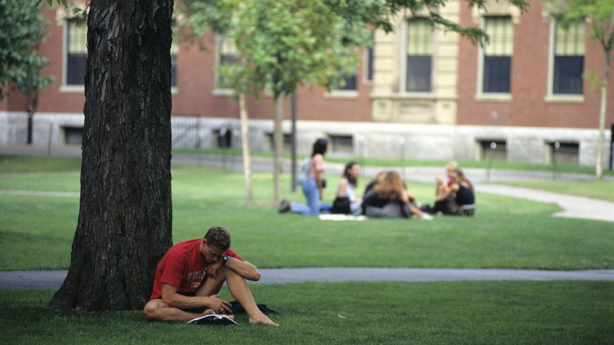 Studierende sitzen, lesen und reden auf dem Campus der Harvard-Universität in den USA (Archivbild)
