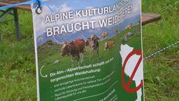 Anti-Wolf-Plakat von Almbauern   Bild:BR