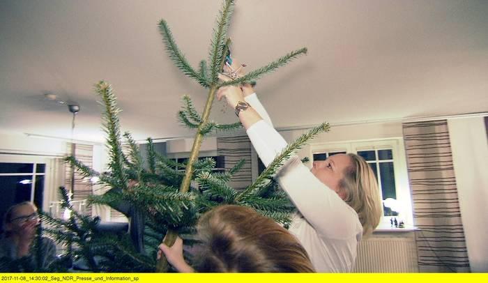 Ndr Weihnachtsbaum.Doku Weihnachtsbaumkauf Familien Fehde Im Forst